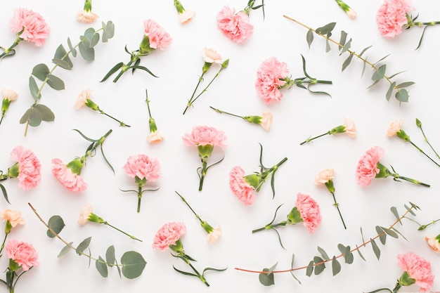 Flowers and eucaaliptus composition. pattern made of various colorful flowers on white background.