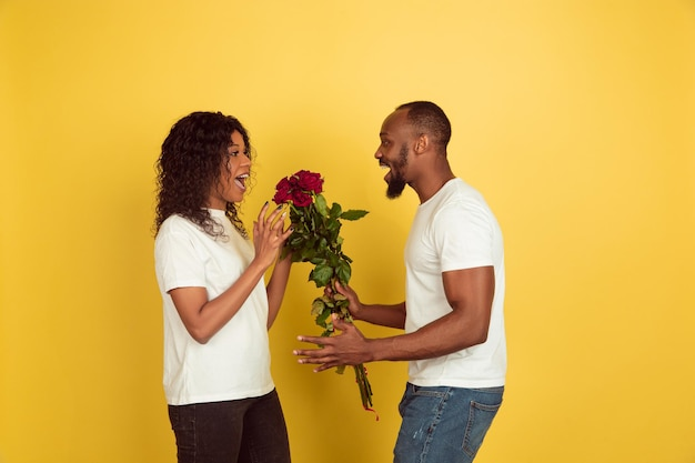 笑顔の花。バレンタインデーのお祝い、黄色のスタジオの背景に分離された幸せなアフリカ系アメリカ人のカップル。