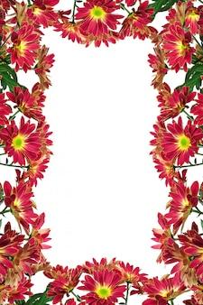分離された花のフレーム