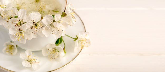 Flowers from an apple tree inside white porcelain cup