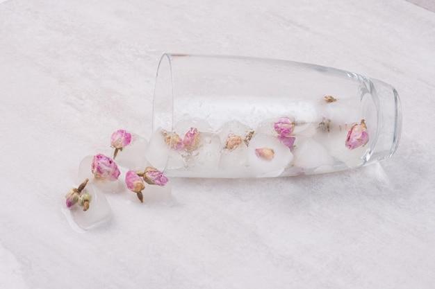 Fiori congelati in cubetti di ghiaccio su superficie bianca.