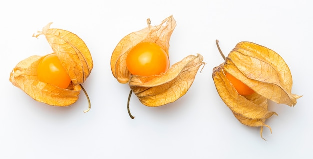 Flowers and fruits of fisalis (physalis peruviana) isolated viewed from above.