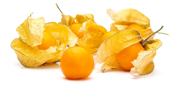 Flowers and fruits of fisalis (physalis peruviana) isolated on white