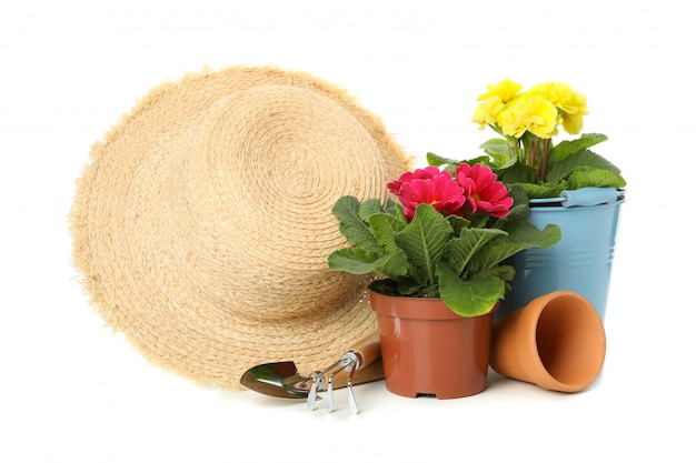 Flowers, gardening tools and straw hat isolated on white isolated