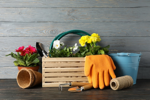 Flowers and gardening tools on wooden background, space for text