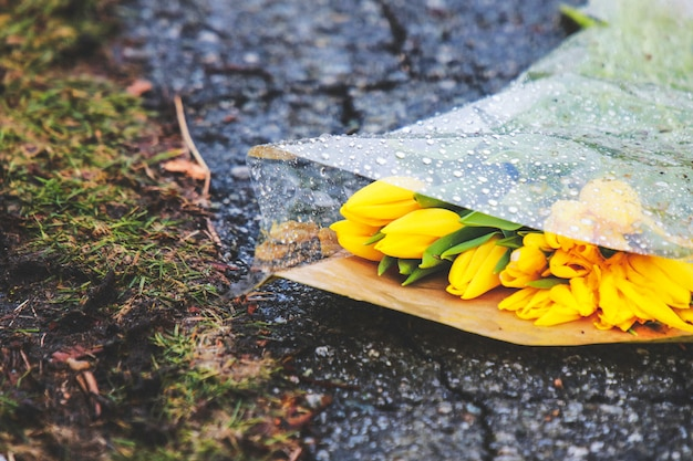 Flowers on the ground