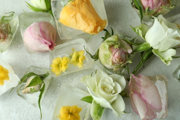 Flowers and ice cubes on white textured background