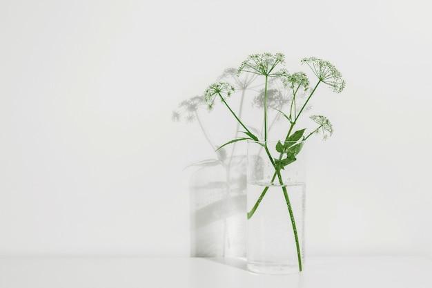 白のガラス花瓶の花