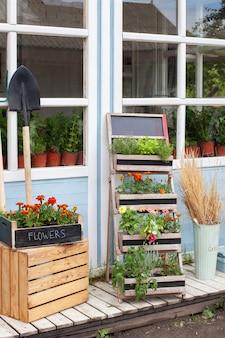 베란 데 꽃집 여름 장식 베란다에 냄비에 꽃 집 식물 성장