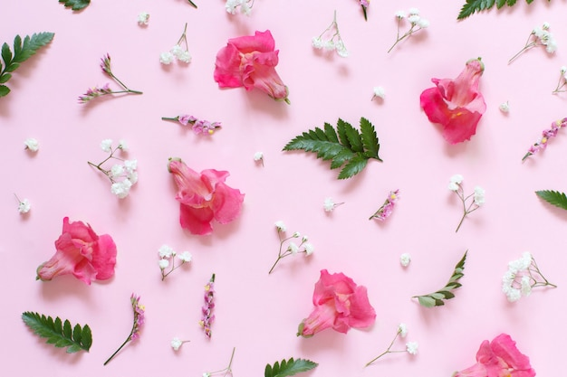 Flowers on a light pink background top view