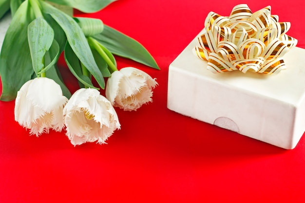 花3月8日。女性の日。おめでとうございます。春。春の花チューリップ贈り物