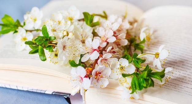 Цветы вишни и абрикоса на открытой книге_