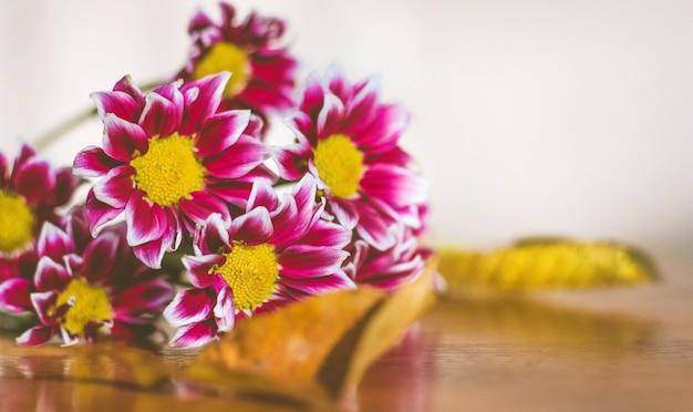 단풍으로 둘러싸인 거베라의 꽃이 테이블에 놓여 있습니다.