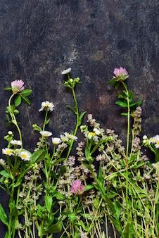 Цветы тимьяна, клевера, ромашки, собранные в букет, лежат на темной поверхности