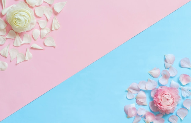 밝은 파란색과 밝은 분홍색 배경 평면도에 꽃
