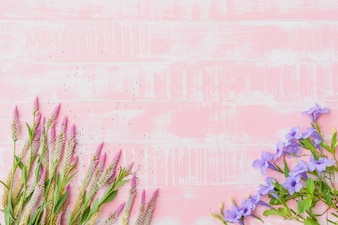 Flowers on a pastel pink wooden background.