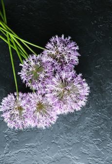 黒の背景に花。ネギの花束。花びらが付いた完璧なフラットレイ。幸せな母親の休日のはがき。国際女性の日の挨拶。広告の誕生日のアイデア。招待。