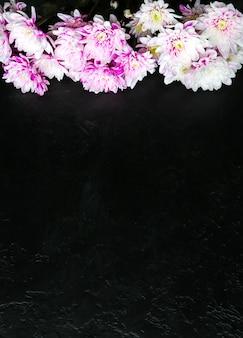 黒の背景に花。菊の花束。花びらが付いた完璧なフラットレイ。幸せな母親の休日のはがき。国際女性の日の挨拶。広告の誕生日のアイデア。スペースの場所をコピーします。