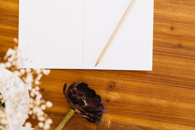 Flowers and paper