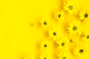 Flowers - pattern on Yellow background.
