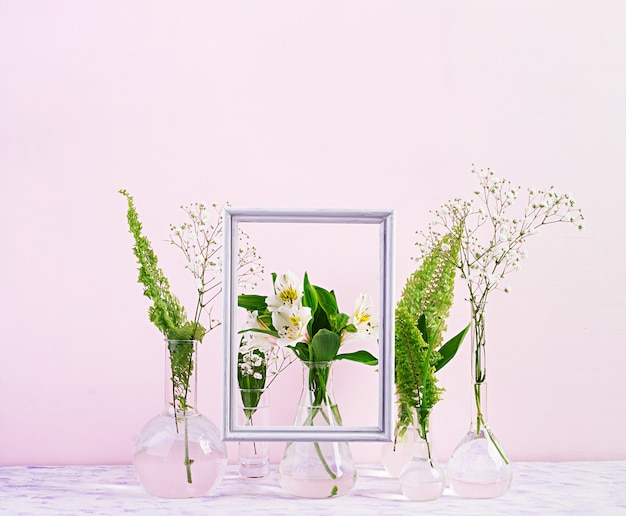 Flowers and plants in flask with frame. beautiful flowers in vase.