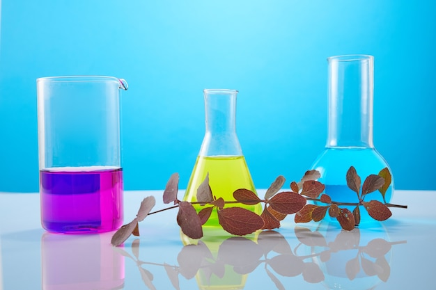 Flowers and plants in test tubes on yellow background. the concept of biological research.
