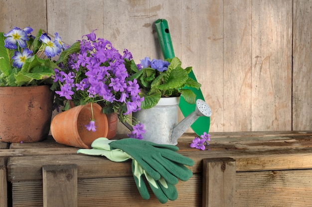 Flowers pot and gardening tools