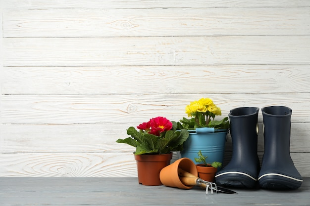 Flowers in pots and gardening tools on wooden background, space for text