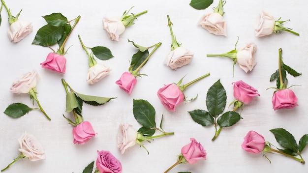 花バレンタインデーの構成。灰色の背景にピンクのバラで作られたフレーム。フラットレイ、上面図、コピースペース。