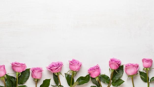Цветочная композиция на день святого валентина. рама из розовой розы на сером. плоская планировка, вид сверху, копия пространства.