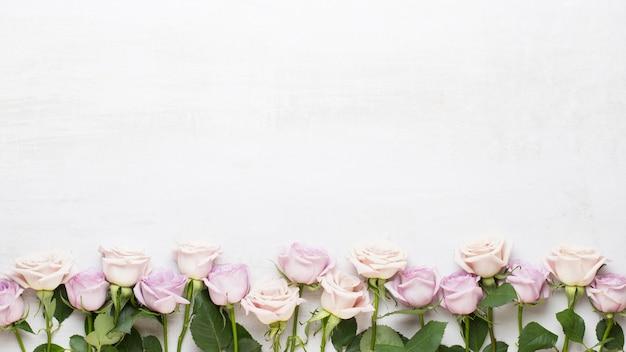 花バレンタインデーグリーティングカード。灰色の背景にピンクのバラ。フラットレイ、上面図。