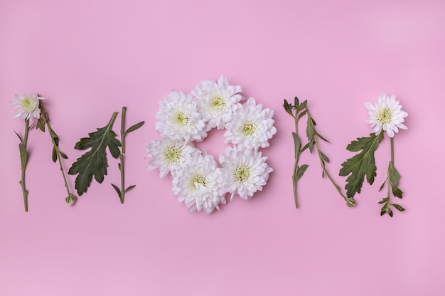 The flowers of white chrysanthemums are laid out in the form of the wordmom