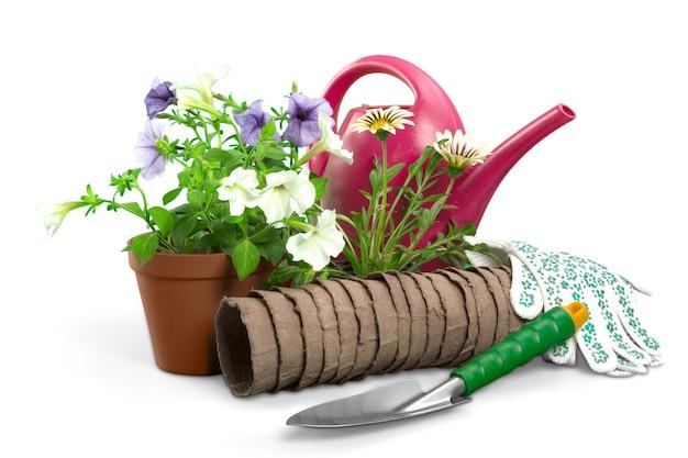 Цветы с садовыми инструментами, изолированные на белом фоне