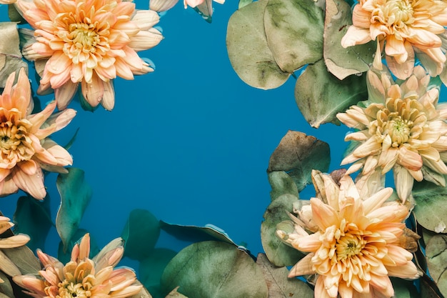 Flowers with leaves in blue water with copy space