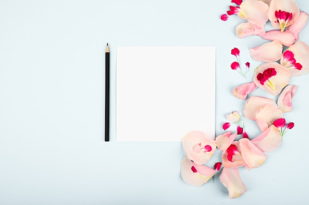 Flowers with paper card note isolated on white background. creative layout.