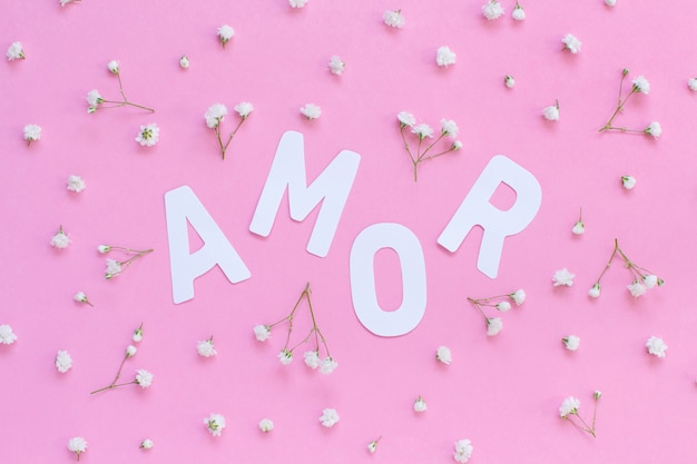 Flowers and word amor on a light pink background top view