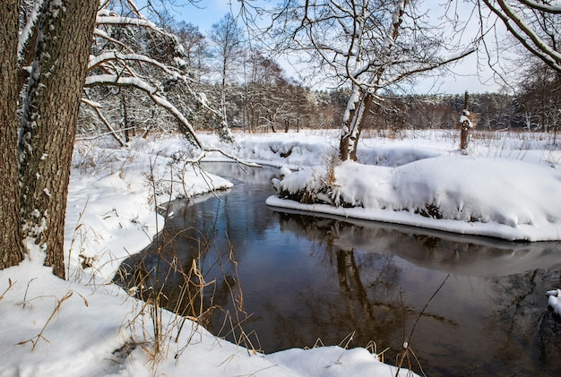 Flowing river in a snowy winter forest branches of trees covered with fresh snow