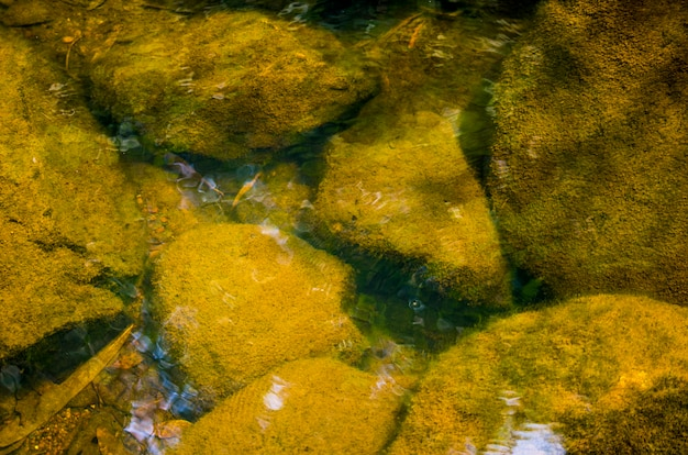 Поток воды размытым узорным фоном.