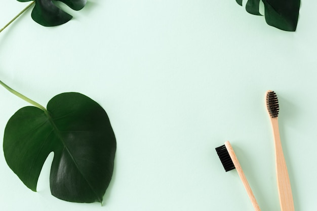 廃棄物ゼロのコンセプト。緑の背景にモンステラと自然のエコ竹歯ブラシのフレームを残します平面図flstレイアウトコピースペース