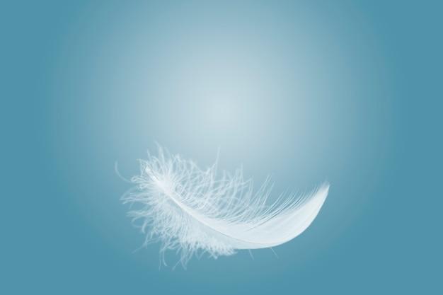 Пушистое белое перо, парящее в воздухе