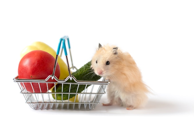 Fluffy beige hamster near shopping basket with cucumber, tomato and lettuce, on white background