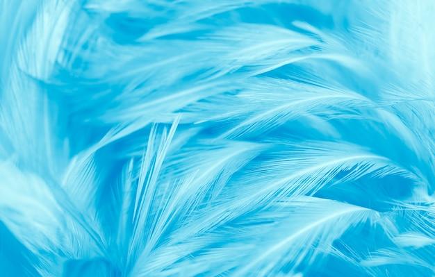 무성한 푸른 깃털 질감