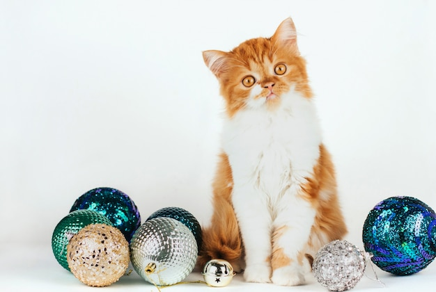 Fluffy ginger kitten sitting surrounded by shiny christmas balls on a white background.