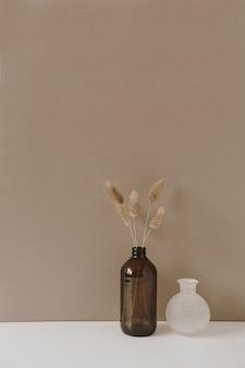 Fluffy pom pom plant stalks in vase standing on white table against neutral pastel beige wall surface