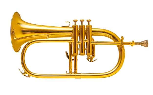 Flugelhorn isolated on white. trumpet.