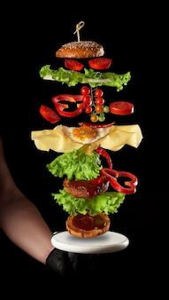 空飛ぶチーズバーガーの材料肉カツ、ゴマパン、チーズ、目玉焼き