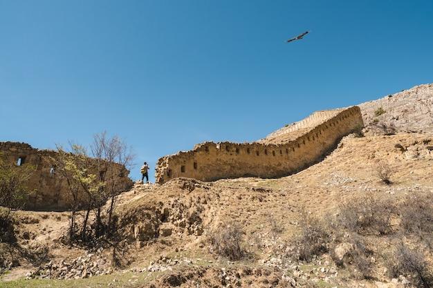 古代の要塞の壁を越えて飛んでいるワシ。グニブ要塞はダゲスタンの歴史的建造物です。ロシア。