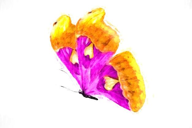 オレンジと紫の色の翼を持つ空飛ぶ熱帯蝶。白い背景で隔離
