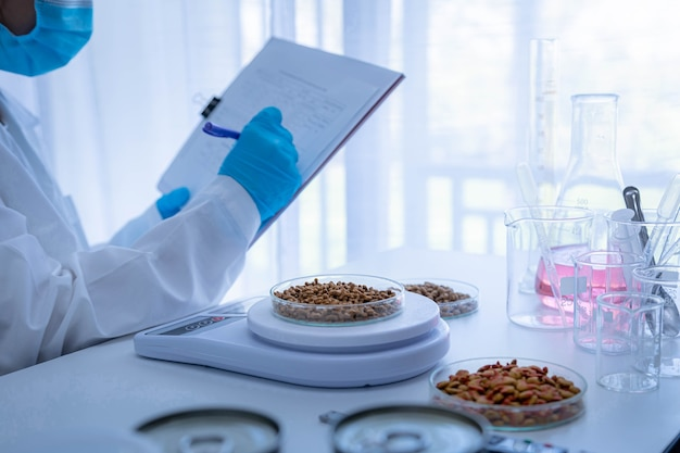 Focused dry pet food on plate. quality control personnel are weighing dry pet food for inspecting the quality. quality control process of pet food industry.