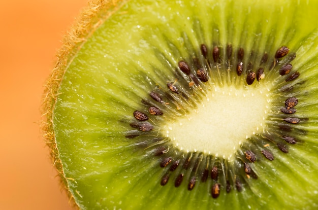 Focused slice of kiwi fruit